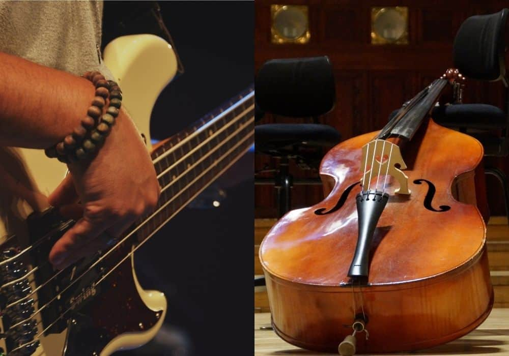 Differences Between Bass and Double Bass