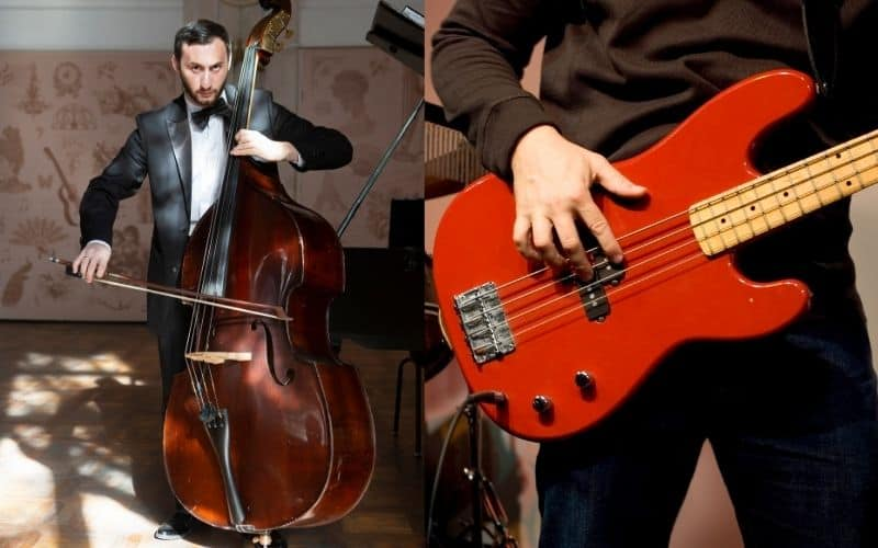 Double Bass Player and Bass Player