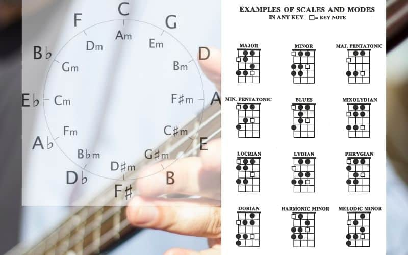 Circle of 5ths and Bass Scales Chart