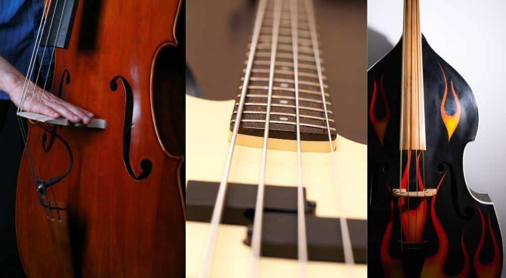 Bass Instruments - Why Bass Is Important